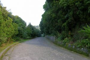 bosco della maddalena casamicciola terme