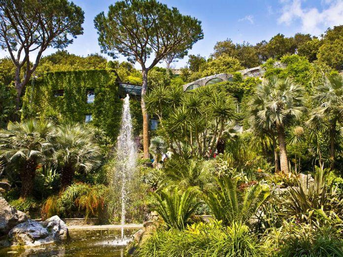 Giardini la Mortella Isola d'Ischia