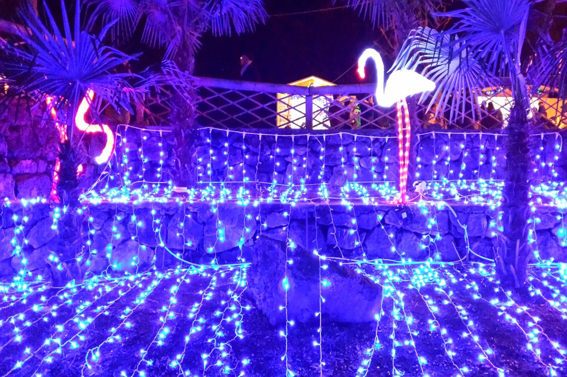 Il Bosco Incantato - Natale ad Ischia