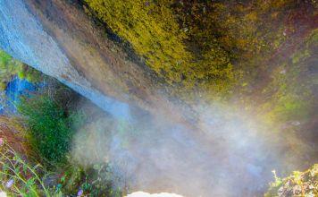 bocca di tifeo Ischia