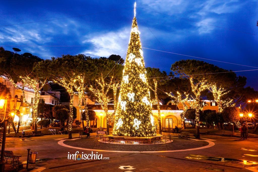 Natale a Casamicciola Albero Piazza Marina